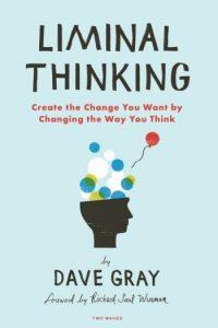 Liminal Thinking Book
